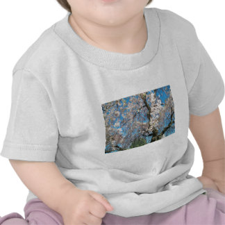 Infant T-Shirt with beautiful springtime photo