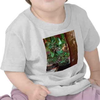 Infant Tee with Indoor Nature Photo!