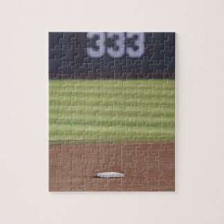Infield, second base, outfield, and 333 foot jigsaw puzzle