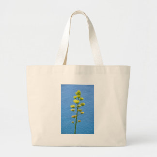 Inflorescence of Agave plant. Bag