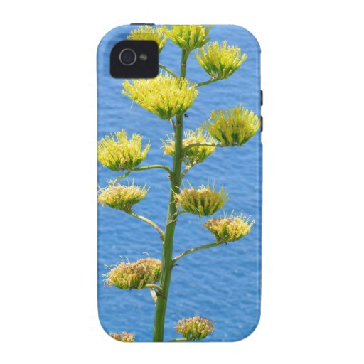 Inflorescence of Agave plant. Case-Mate iPhone 4 Case