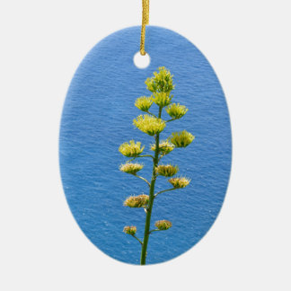 Inflorescence of an Agave plant Ceramic Oval Decoration