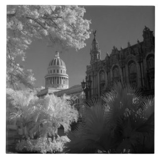 Infra red of Capitol building dome in Havana Tile