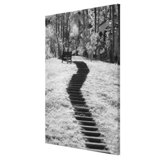 Infra red of trees buildings and trails in Las Stretched Canvas Print