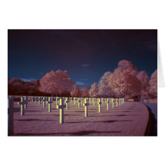 Infrared American Cemetery Crosses Card