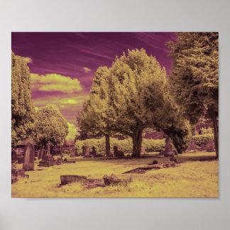 Infrared graveyard landscape poster
