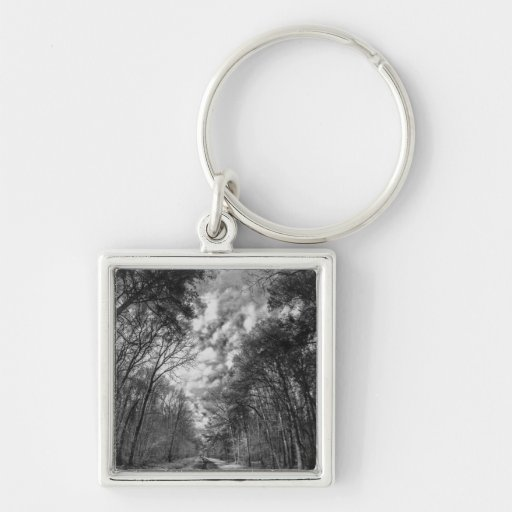 Infrared Landscape path through woods Key Chains