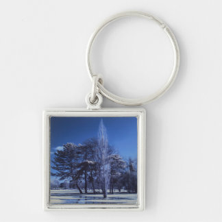 Infrared Landscape - Trees in a Park Keychains