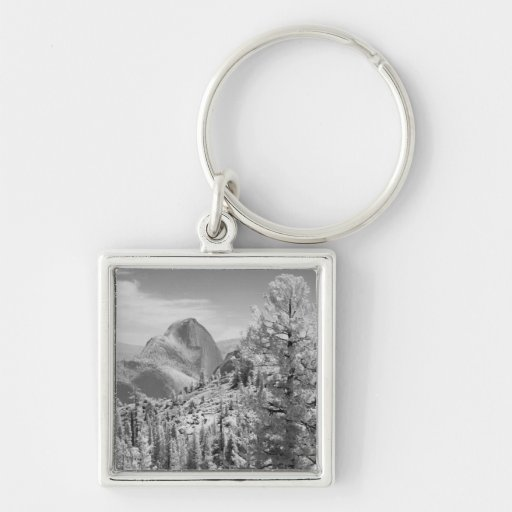 Infrared photo in East side of Yosemite National 2 Keychain