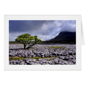Ingleborough from White Scars Card