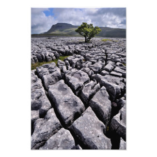 Ingleborough from White Scars, Yorkshire Dales Photo Art