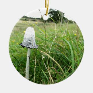 Ink cap mushroom in field round ceramic decoration