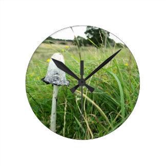 Ink cap mushroom in field round clock