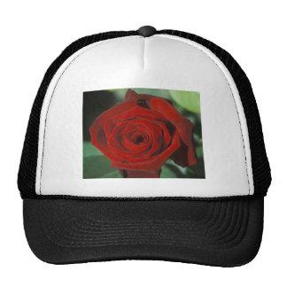 Ink Spots Trucker Hat