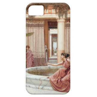 Innocent Amusements iPhone 5 Cases