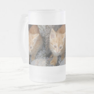Innocent Kitten Frosted 16 oz Frosted Glass Mug
