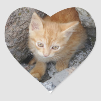 Innocent Kitten Heart Sticker