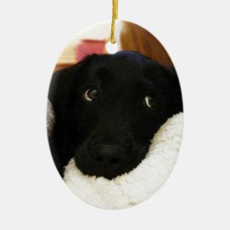 Innocent puppy.JPG Ceramic Oval Decoration