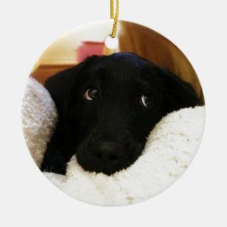 Innocent puppy.JPG Round Ceramic Decoration