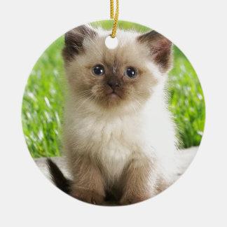 Innocent Ragdoll Kitten Christmas Ornament