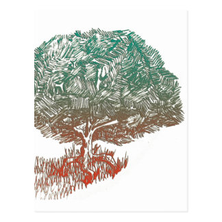 Innovative Tree Postcard