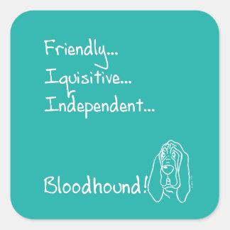 Inquisitive Bloodhound Square Sticker