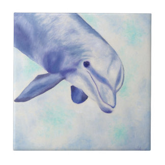 Inquisitive Dolphin Square Tile