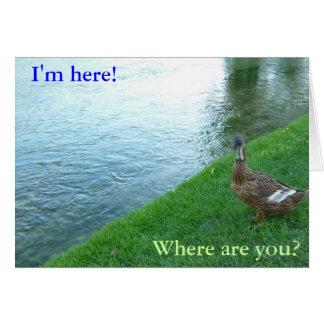 Inquisitive Duck Greeting Card