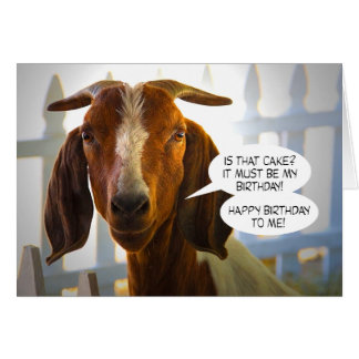 Inquisitive Goat Asks Questions Birthday Greeting Card