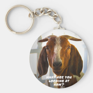 Inquisitive Goat Asks Questions Key Ring