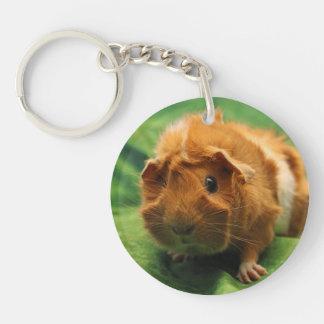 Inquisitive Guinea Pig Keychain Single-Sided Round Acrylic Keychain