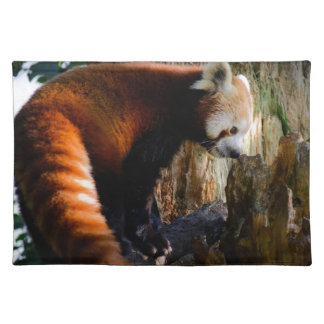 inquisitive red panda placemat