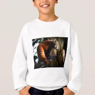 inquisitive red panda sweatshirt