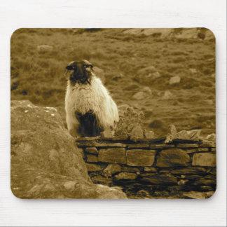 Inquisitive Sheep Mouse Mat