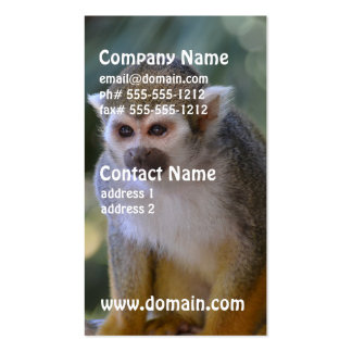 Inquisitive Squirrel Monkey Double-Sided Standard Business Cards (Pack Of 100)