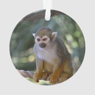Inquisitive Squirrel Monkey Ornament