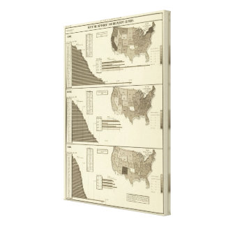 Insane, Idiotic, Blind statistical map Canvas Print
