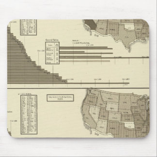 Insane, Idiotic, Blind statistical map Mouse Pad