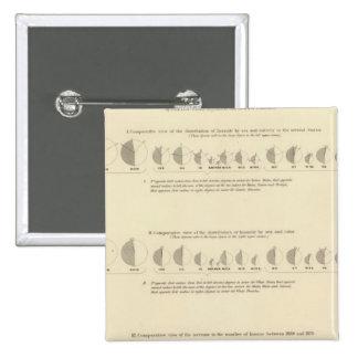 Insane, Statistical US Lithograph 1870 15 Cm Square Badge