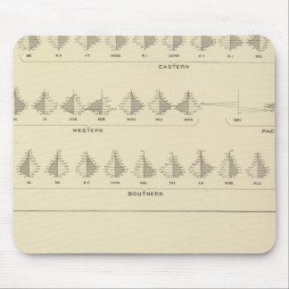 Insanity, Statistical US Lithograph Mouse Mat