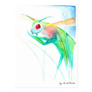 Insect Gottesanbeterin in multicolored Postcard