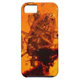 Insect in Amber iPhone 5 Case