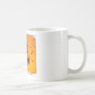 Insect in Amber Basic White Mug