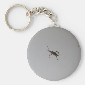 Insect Key Ring
