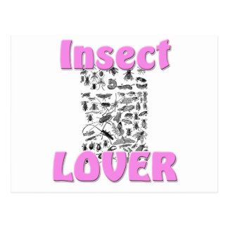 Insect Lover Postcard