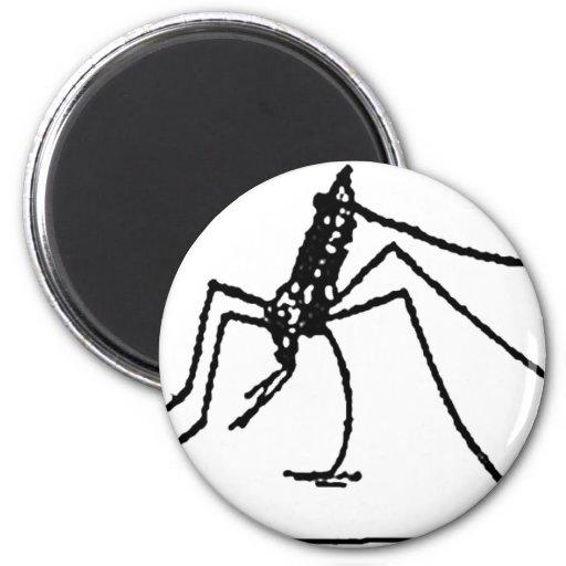 insect fridge magnet