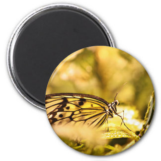Insect Themed 6 Cm Round Magnet