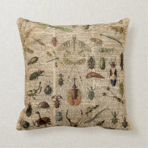 Insects Bugs Vintage Illustration Dictionary Art Cushion