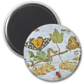 Insects Crawling 6 Cm Round Magnet