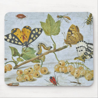 Insects Crawling Mouse Mat
